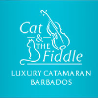 Partner - Cat and the Fiddle